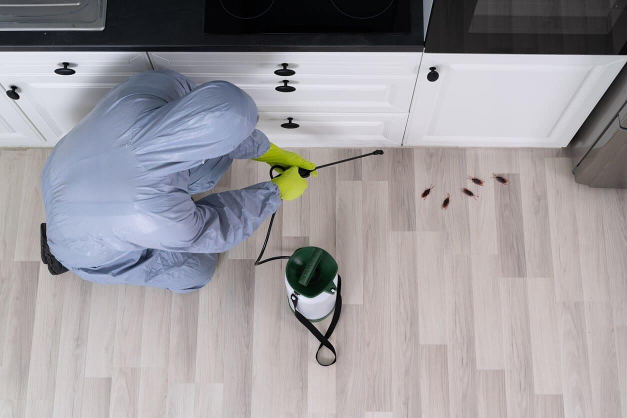 Commercial pest control etobicoke